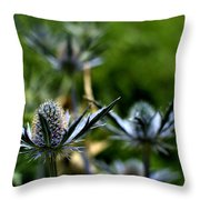 Sea Hollies Throw Pillow
