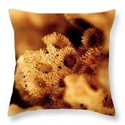 Sea Home Throw Pillow