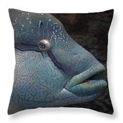 Sea Life 19 Throw Pillow