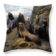 Sea Lion Chorus Throw Pillow