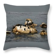 Sea Lions And Birds Throw Pillow