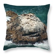 Sea Lions Sunning Throw Pillow by Suzanne Gaff