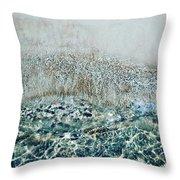 Sea Meets Sand Throw Pillow