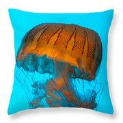 Sea Nettle Jellyfish - Orange And Turquoise Throw Pillow