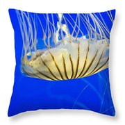 Sea Nettle Throw Pillow