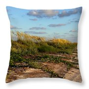 Sea Oats Along The Beach Throw Pillow