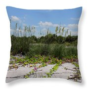 Sea Oats And Blooming Cross Vine Throw Pillow