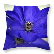 Sea Of Blue Throw Pillow