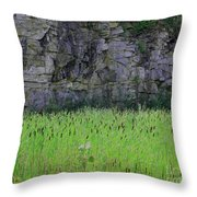 Sea Of Cattails Throw Pillow