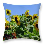 Sea Of Sunshine Throw Pillow