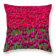 Sea Of Tulips Throw Pillow