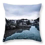 Sea Pond Throw Pillow