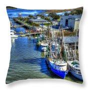 Sea Ray Of Savannah  Throw Pillow