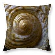 Sea Shell Beauty Throw Pillow
