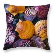Sea Shells And Sea Glass Throw Pillow