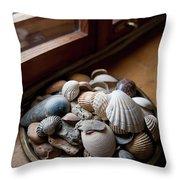 Sea Shells And Stones On Windowsill Throw Pillow