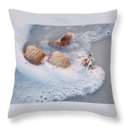 Sea Shells In A Wave Of Foam Throw Pillow