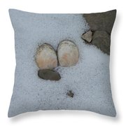 Sea Shells In Snow Throw Pillow