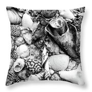Sea Shells - Nassau, Bahamas Throw Pillow