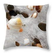 Sea Shells Rocks And Ice Throw Pillow