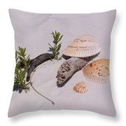 Sea Shells With Drift Wood And Small Plants Throw Pillow