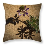 Sea Shore Lupine - 365-60 Throw Pillow