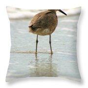 Sea Shore Stroller Throw Pillow
