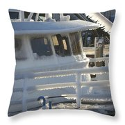 Sea Spray Ice Throw Pillow