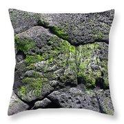 Sea Turtle Formation Throw Pillow