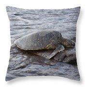 Sea Turtle On Rock Throw Pillow