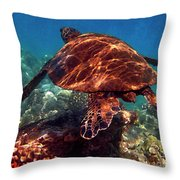 Sea Turtle On The Reef Throw Pillow by Bette Phelan