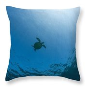 Sea Turtle Silhouette Throw Pillow