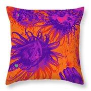 Sea Urchin 14 Throw Pillow