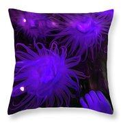 Sea Urchin 8 Throw Pillow