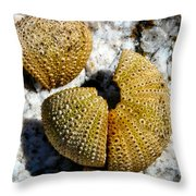 Sea Urchin Puzzle Pieces Throw Pillow