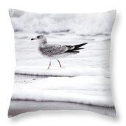 Seabird  Throw Pillow
