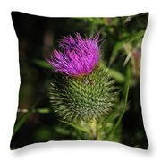 Seacoast Wildflower I Throw Pillow