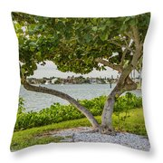 Seagrape Frame Throw Pillow