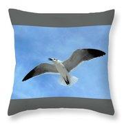 Seagull #1 Throw Pillow