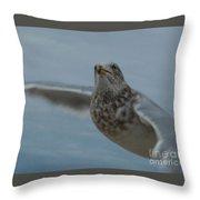 Seagull 4 Throw Pillow