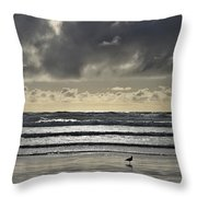 Seagull At Cannon Beach Throw Pillow