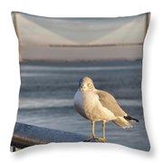 Seagull At Ravenel Bridge Throw Pillow