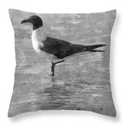 Seagull Black And White Throw Pillow