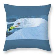 Seagull Departing Close-up Throw Pillow