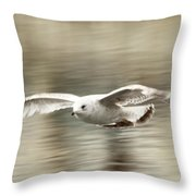 Seagull Glide Throw Pillow