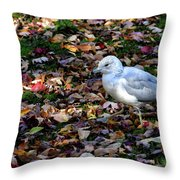 Seagull In The Fallen Leaves Throw Pillow