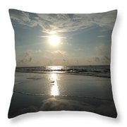Seagull In The Spotlight Throw Pillow