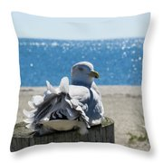 Seagull In Wind Throw Pillow