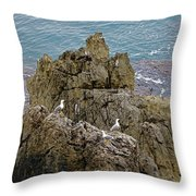 Seagull Island On Cefalu In Sicily  Throw Pillow