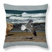Seagull Landing Hutchinson Island, Fl Throw Pillow